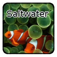 Marine Fish Tank Supplies